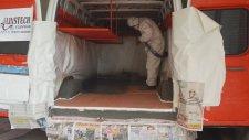 Ford Transit Panelvan Kasa İçi Kaplama Alınstech Polyurea