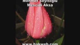 Mehmet Seyitoğlu - Mescidi Aksa