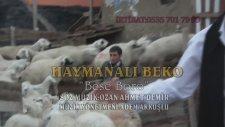 Haymanalı Beko - Bese Bero