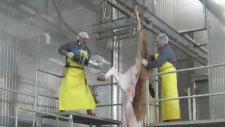 CEMSAN Ayak Kesme Bölümü (Slaughterhouse Systems - Mezbahane Sİstemleri)