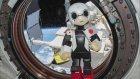 Konuşan Robot Kirobo