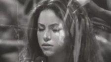 Shakira - Moscas En La Casa (Live Video)