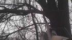 Fide Sökme Küregi Ağaç Kesici Testere Aparatı