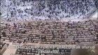 056 Vakia Suresi İbrahim Jibreen Türkçe Altyazılı