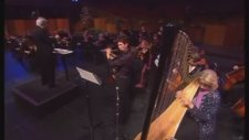 W.a. Mozart Music Concerto Flute And Harp K 299 - 1st Movement - Beautiful Live Classical Concert