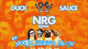 Duck Sauce - Nrg  Skrillex, Kill The Noise, Milo & Otis Remix)