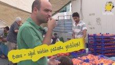 Aile Çocuk Aktiviteleri - Organik Pazar Keyfi