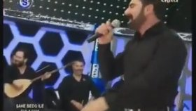 Şahe Bedo - Dilo Yeman