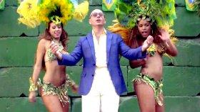 Pitbull - We Run The Night Ft Pitbull