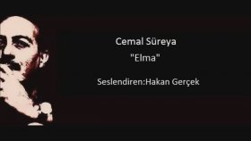 Cemal Süreya - Elma
