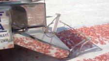 Domates Kesme Ve Sergi Alanına Serme Makinesi