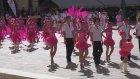 Debrecen Üniversitesi - Çiçek Karnavalı (Ağustos 2012)