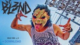 Dj Bl3nd - Wild