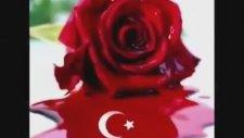F. Tura - Güzel Türkıyem