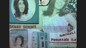 Şenay Şenses - Gittin Gideli