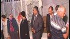 Gülten Salih - Düğün Tebrik Merasimi Dörtyol Köyü