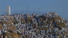 Tura - Arafat Dağı - Müziksiz İlahiler