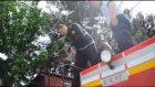 Ağaçta mahsur kalan kediyi itfaiye kurtardı - SAMSUN