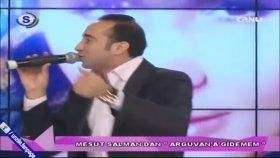 Mesut Salman - Arguvana Gidemem