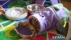 Sevimli Bebek Yavru Kediyi Kucağına Alınca Anne Kedi Dayanamıyor