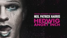 Hedwig & The Angry Inch | Neil Patrick Harris - Wig In A Box | Official Audio