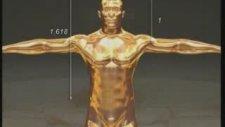 Altın Oran (Allah'n Mükemmel Yaratma Sanatı)