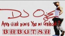 Dj Ozie & Babutsa - Ayva Çiçek Açmış ( Remix) 2014 Hd