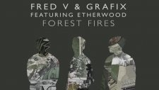 Fred V & Grafix feat. Etherwood - Forest Fires (Taiki Nulight Remix)