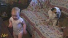 Tüm Dertlerini Köpeğe Anlatmaya Çalışan Bebek