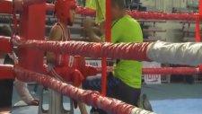 Alt Minikler Türkiye Ferdi Boks Şampiyonası