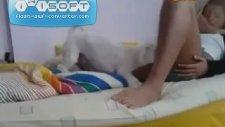 Kıza Hallenen Köpek