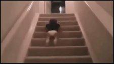Merdivenden İnmenin Kolay Yolunu Bulan Müthiş Bebek