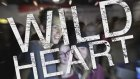 The Vamps - Wild Heart ( Official Lyric Video)