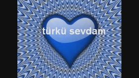 Ali Yılmaz - Türkü Sevdam (Bedirhan Gökçe)