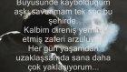 Zalim