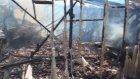 Çiftlik Yangını: 15 Koyun Telef Oldu - Bursa