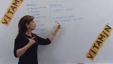 Solunum, Beslenme ve Hareket - YGS-LYS Biyoloji Konu Anlatımı - LİSEGO