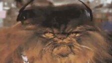 Kemal Sunal Yaylalar - Komik Kediler