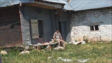 Köprülü Beldesi 2011/16. Bölüm Koma Zerdeşt Teyrike Gurbete