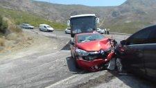 Sırtlanda Trafik Kazası