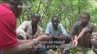 Çikolatanın Tadına İlk Kez Bakan Kakao Çiftçileri