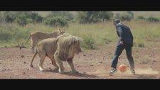 3 Aslan ile Futbol Oynadı