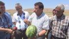 Dolu yağışı kavun karpuz üreticisini vurdu - YOZGAT