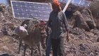 Turkey: Where donkeys power the internet - BBC News