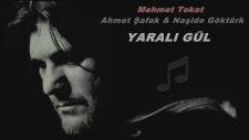 Mehmet Tokat & Ahmet Şafak - Yaralı Gül