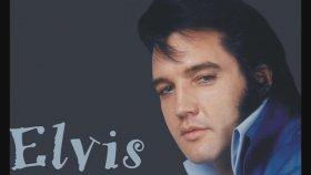 Elvis Presley - The Wonder You