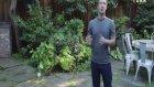 Facebook'un Kurucusu Bill Gates'e Böyle Meydan Okudu