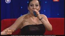 Zerrin Naycı - Şarkılar Seni Söyler