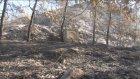 Orman Yangını Kontrol Altına Alındı - Muğla