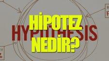 Hipotez Nedir? - Tek Cümlede Evrim
